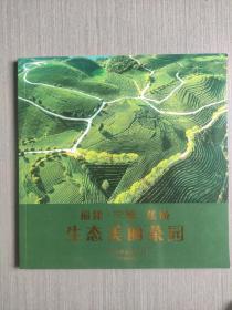 福建·宁德·蕉城生态美丽茶园