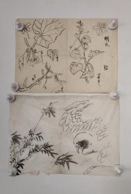 回流老字画手绘名家画稿二幅图软片D4711