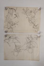 回流老字画手绘名家画稿二幅图软片D4707