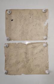 回流老字画手绘名家画稿二幅图软片D4714