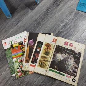 植物杂志(6期合售见图)