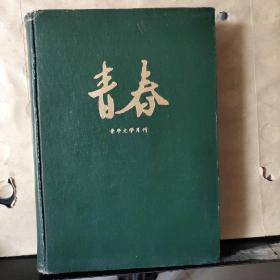 青春(青年文学月刊1987年第1~11.12期 总第98~108.109期 )1~12合订本