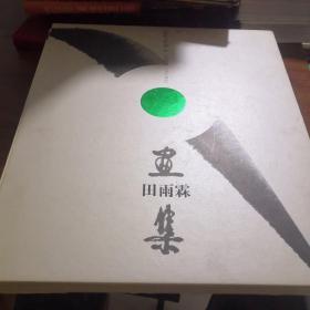 田雨霖画集《 田雨霖签赠本,首页有田雨霖画一副》有套盒
