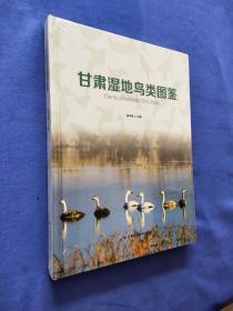 甘肃湿地鸟类图鉴 全新未开封