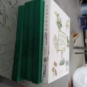 正在消失的美丽-中国濒危动植物寻踪:植物卷(库存5本只有一本带书衣)