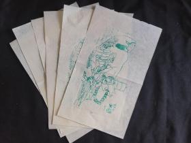 木板水印旧制老信笺纸5张