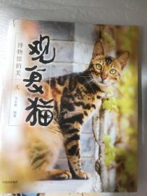 观复猫:博物馆的美一天 201