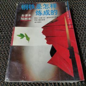 钢铁是怎样炼成的 /[苏联]尼·奥斯特洛夫斯基 漓江出版社
