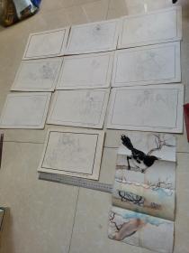 连环画手绘稿 10张合售