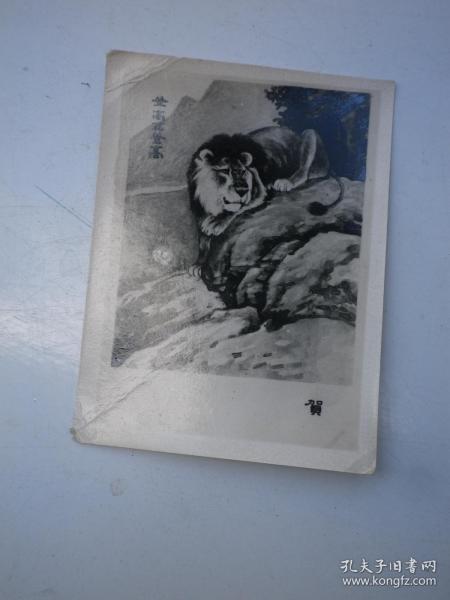 10  狮子画 贺年卡 照相版   六十年代