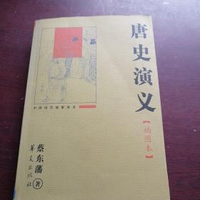 中国历代通俗演义:唐史演义(插图本)
