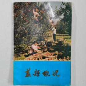 盖县概况(1991)