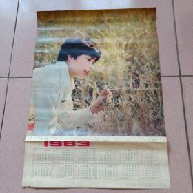 1983年年历——电影演员张瑜