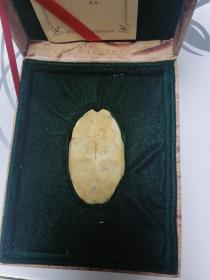 甲骨文 龟腹甲 (带锦盒)