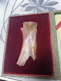 中国殷商甲骨文骨片(带锦盒)