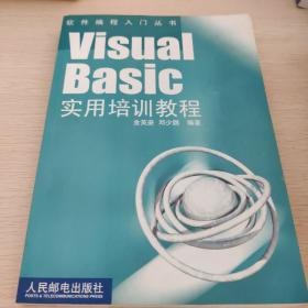 Visual Basic实用培训教程——软件纺程入门丛书