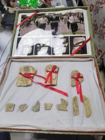 甲骨文骨片(共10片)带锦盒