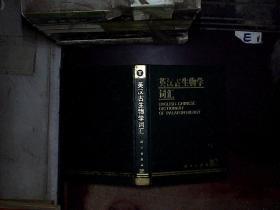 英汉古生物学词汇