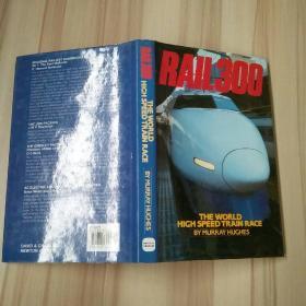 RAIL 300