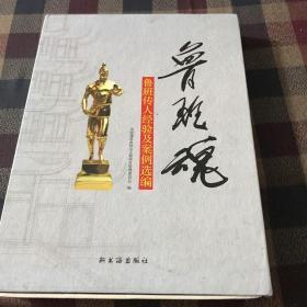 中国建筑骄子:2008全国建筑工程装饰奖选材指南