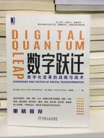 数字跃迁:数字化变革的战略与战术