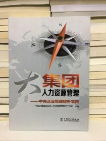 大集团人力资源管理:中央企业管理提升实践