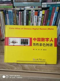 中国数字人男性彩色图谱