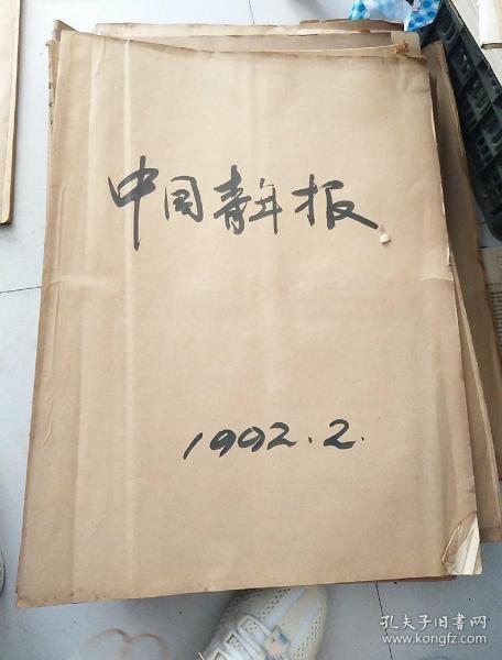 中国青年报,1992年二月