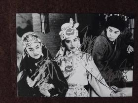 【保真】林青霞 王祖贤 张曼玉 亲笔签名照片 7寸 限量集体照