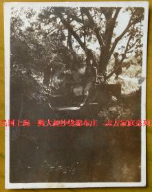 民国老照片:民国33年——上海兆丰花园,霞和三妹,看背题【民国上海—隆大昶纱线棉布庄—志方家庭系列】