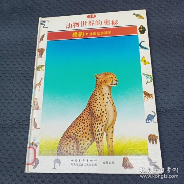 动物世界的奥秘:[图集].18.猎豹:速度记录冠军