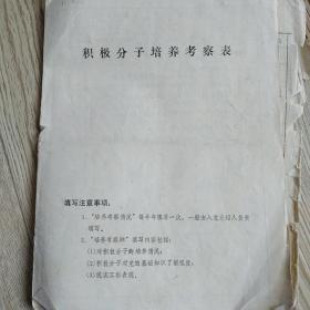 孙润香积极分子培养考察表