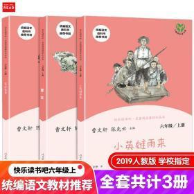 人教版快乐读书吧六年级上爱的教育童年小英雄雨来全套3册统编版