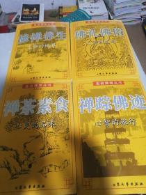 走进佛境丛书(全4卷)一版一印