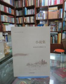 昌宁文化丛书. 第2辑. 小说集
