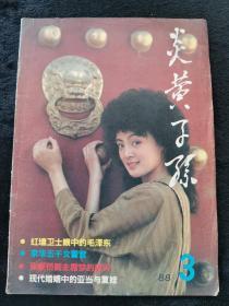 炎黄子孙1988年第3期