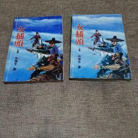 卧龙生情侠小说:女捕頭(上下二本)