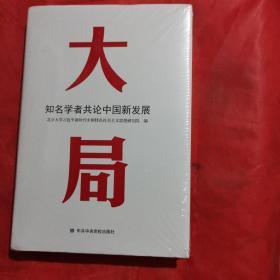 大局:知名学者共论中国新发展(未拍封)