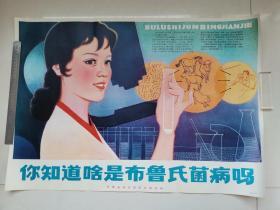 对开宣传画:你知道啥是布鲁氏菌病吗(柏华绘,河南省地方病防治研究所)