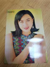 90年代怀旧明星海报贴画:刘嘉琳
