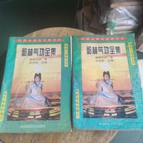 郭林气功全集 上下册全