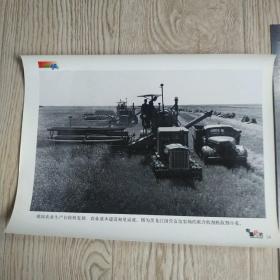 庆祝中华人民共和国建国五十周年新闻照片之14:黑龙江国营友谊农场