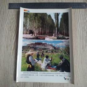 庆祝中华人民共和国建国五十周年新闻照片之46:宁夏中卫县防风固沙林。测量拉萨大气洁静度