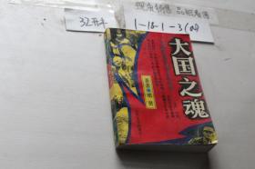 大国之魂:中国远征军滇缅征战纪实