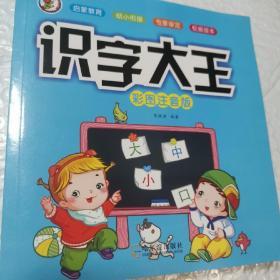 识字大王(彩图注音版)/儿童学前识字