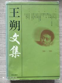 王朔文集(2)