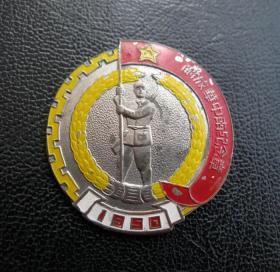 华中南纪念章