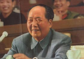 伟大领袖毛主席在四月二十四日的全体会议上
