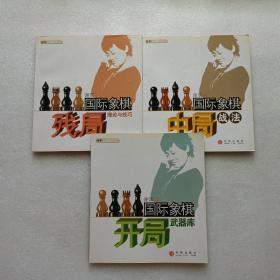 国际象棋开局武器库 + 国际象棋中局战法 + 国际象棋残局理论与技巧   3本合售
