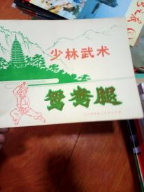 少林武林术-鸳鸯腿